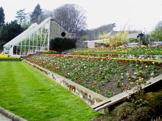 LuxuryHeritageTourscragside tulips