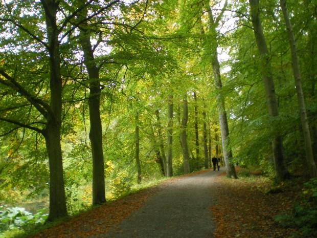 LuxuryHeritageToursWallington lake walk
